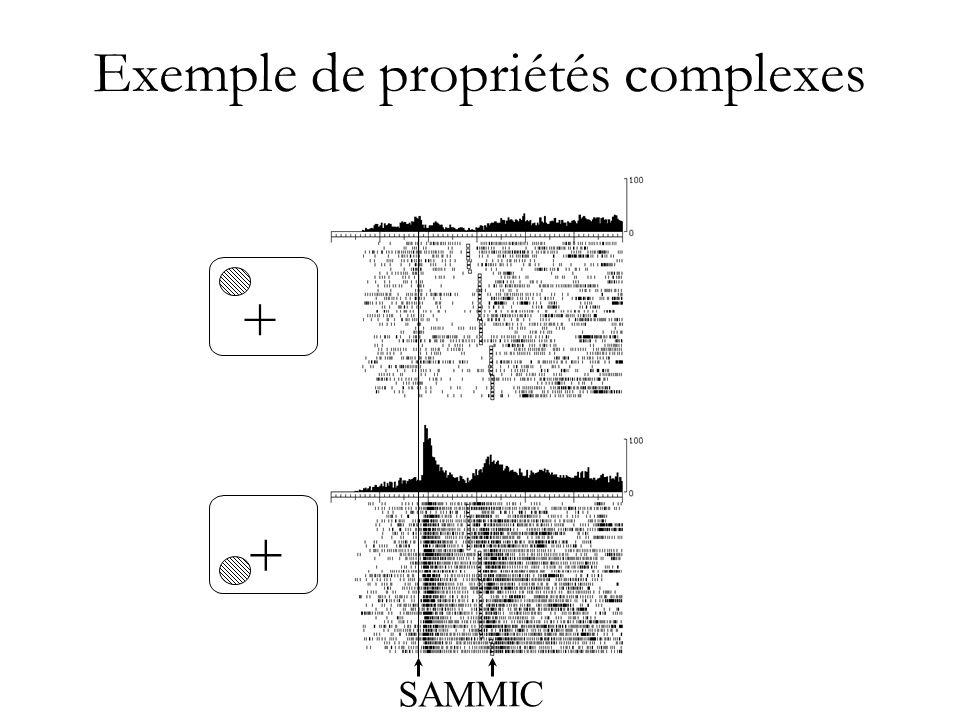 Exemple de propriétés complexes