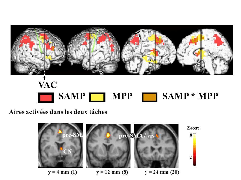 VAC SAMP MPP SAMP * MPP Aires activées dans les deux tâches pre-SMA