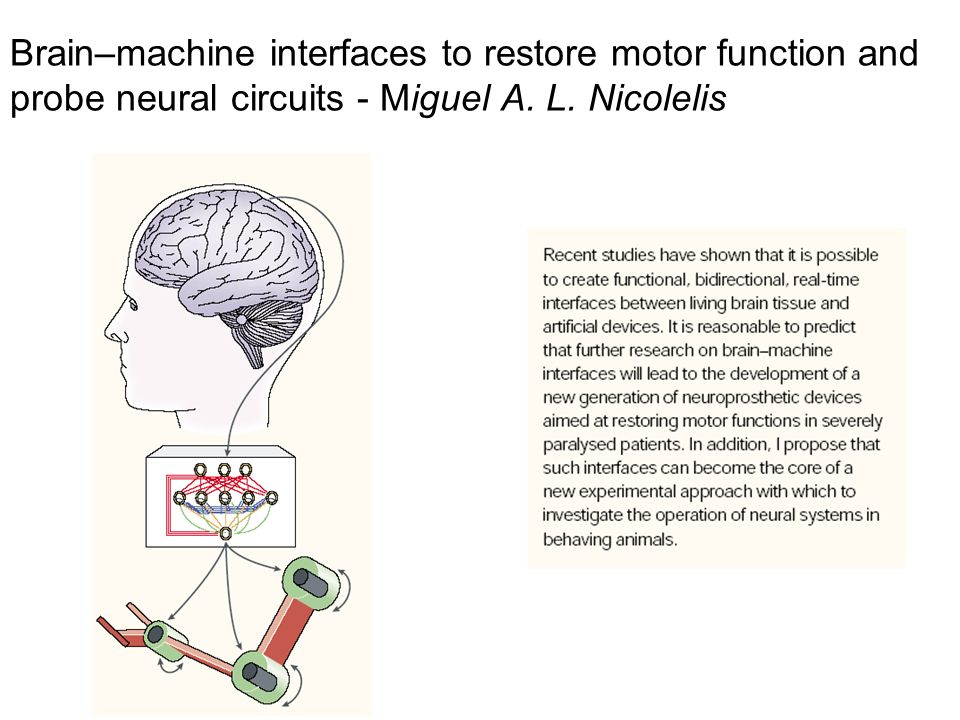 Brain–machine interfaces to restore motor function and probe neural circuits - Miguel A.