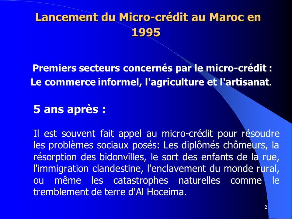 Lancement du Micro-crédit au Maroc en 1995