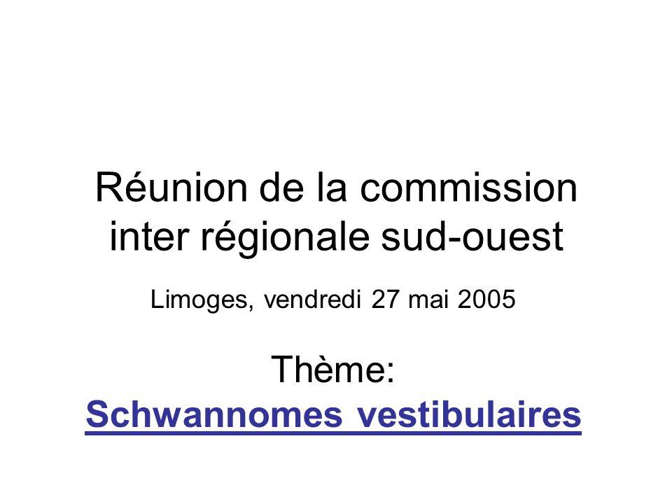 Réunion de la commission inter régionale sud-ouest