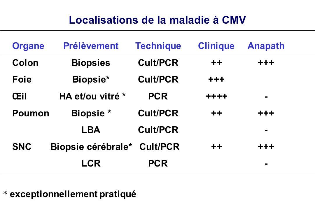 Localisations de la maladie à CMV