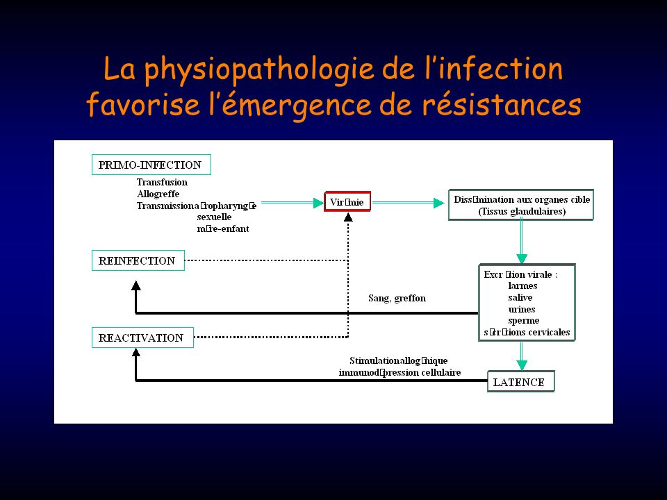 La physiopathologie de l'infection favorise l'émergence de résistances