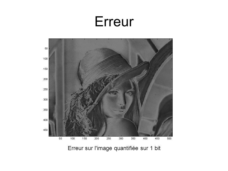 Erreur sur l image quantifiée sur 1 bit