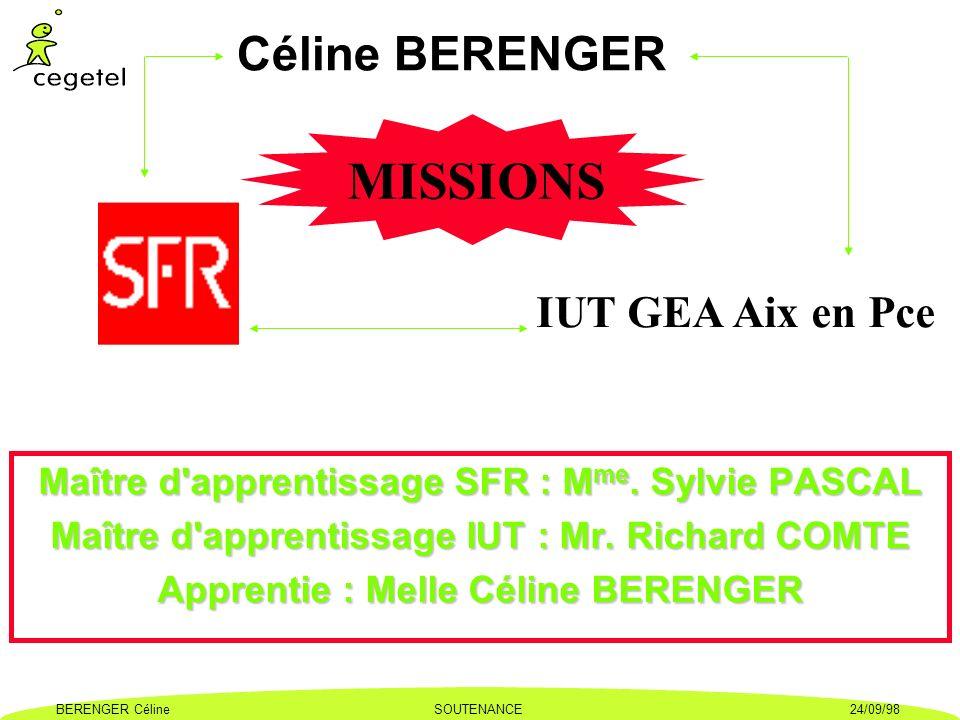 MISSIONS Céline BERENGER IUT GEA Aix en Pce