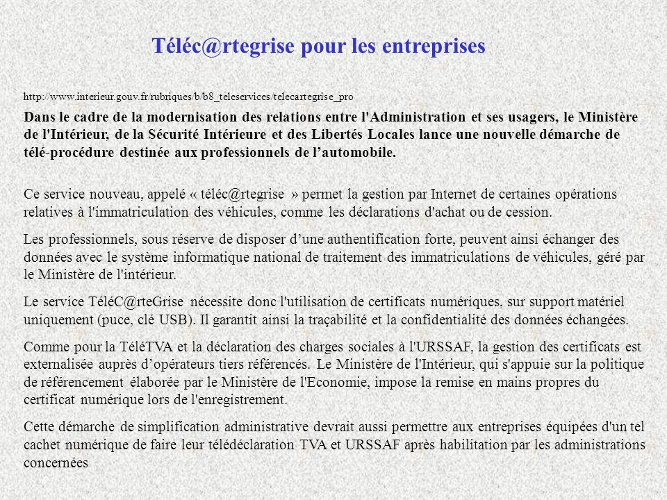 Téléc@rtegrise pour les entreprises