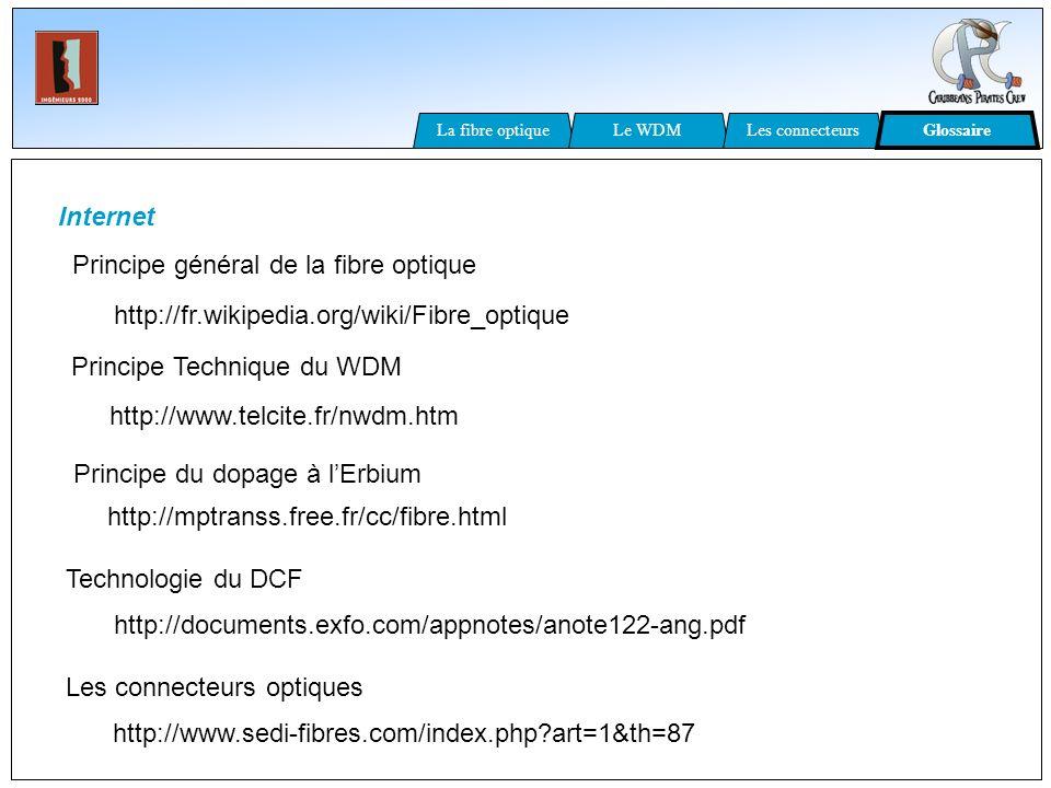 Principe général de la fibre optique