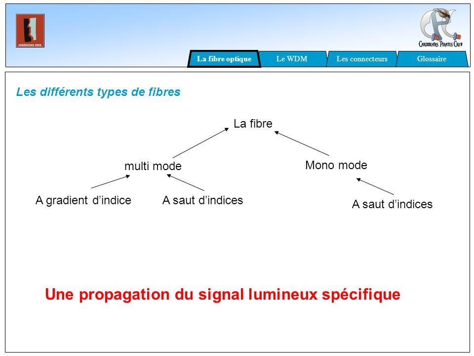 Une propagation du signal lumineux spécifique
