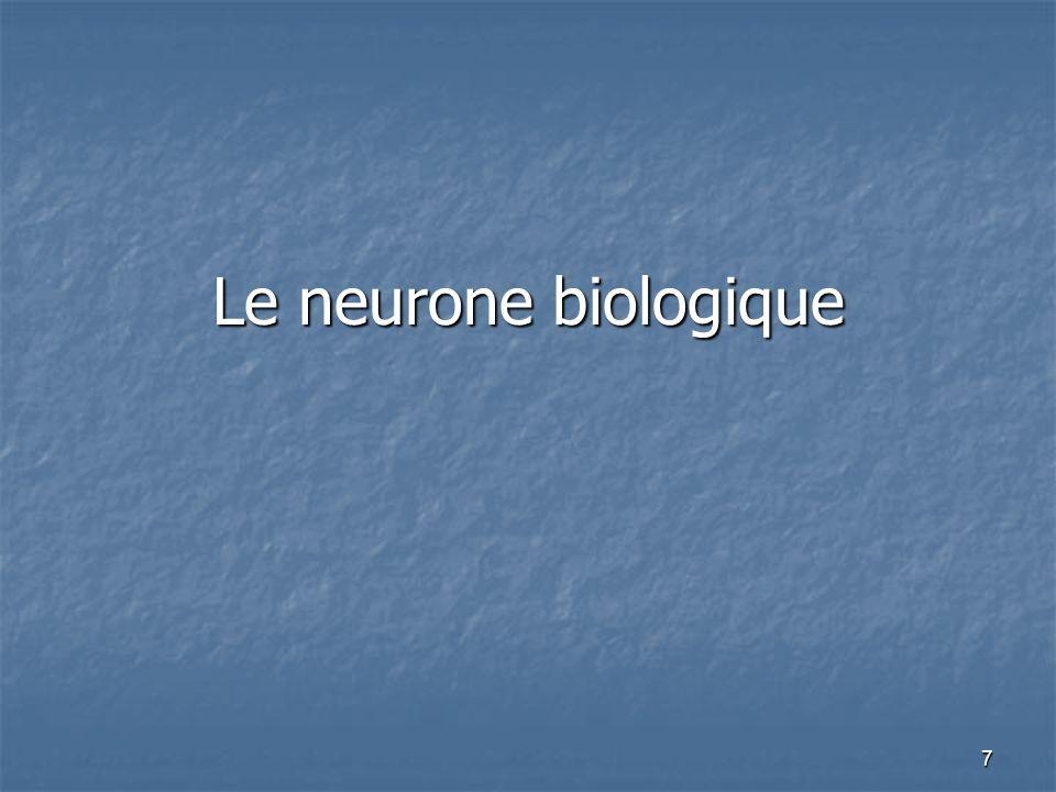 Le neurone biologique
