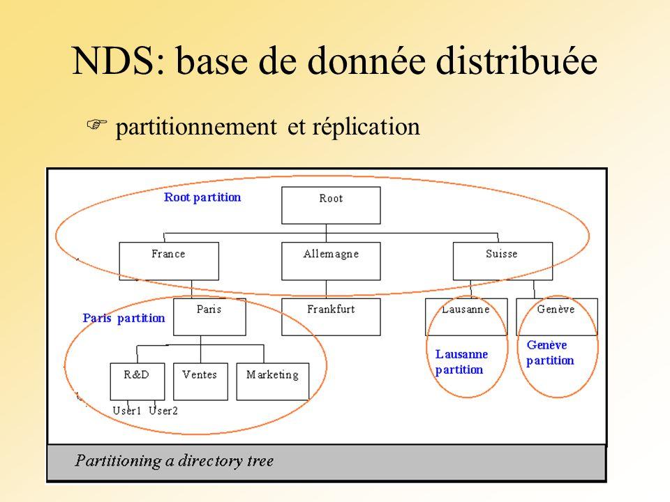 NDS: base de donnée distribuée