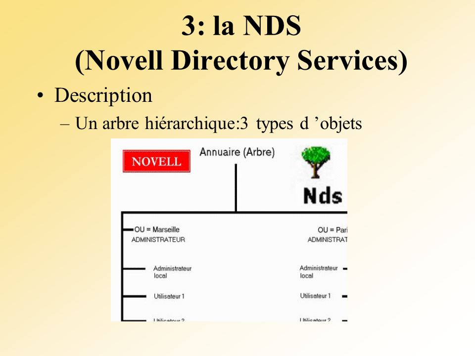 3: la NDS (Novell Directory Services)