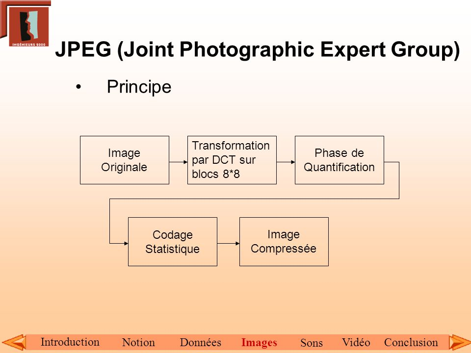 JPEG (Joint Photographic Expert Group)