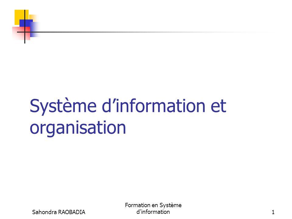 Système d'information et organisation