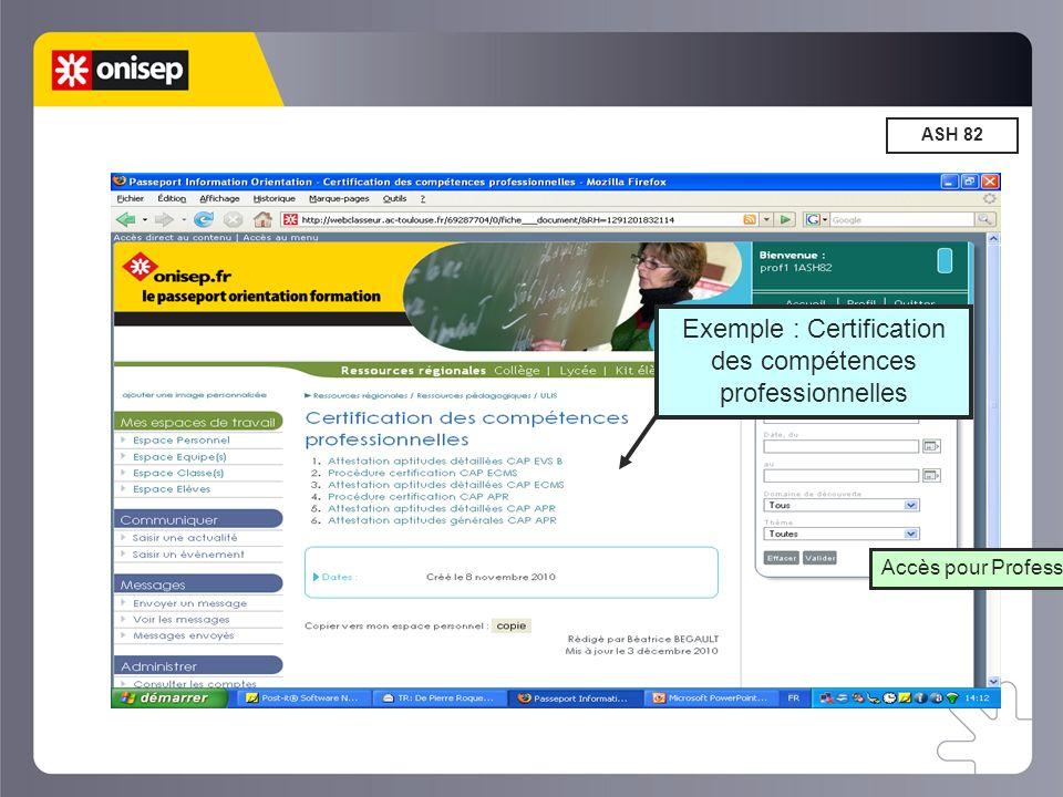 Exemple : Certification des compétences professionnelles
