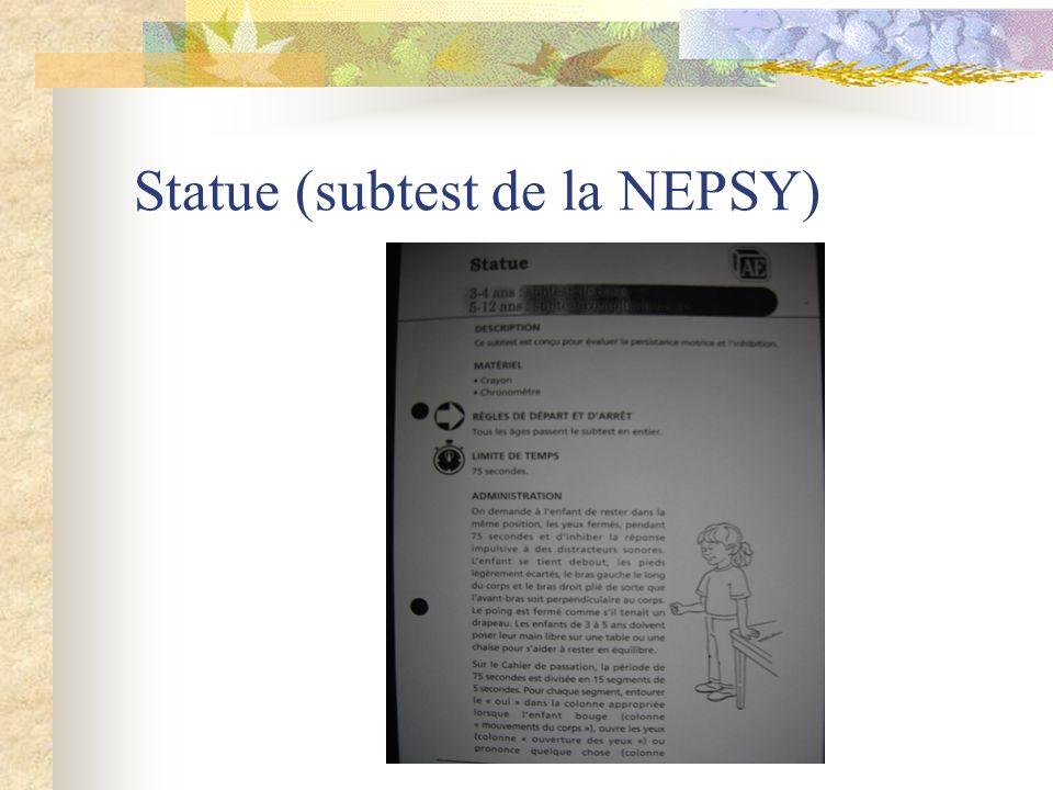 Statue (subtest de la NEPSY)