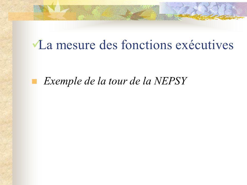 La mesure des fonctions exécutives