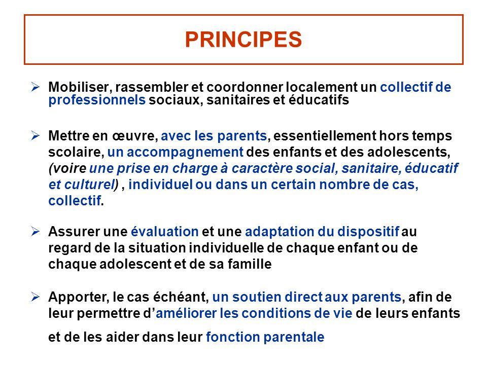 PRINCIPES Mobiliser, rassembler et coordonner localement un collectif de professionnels sociaux, sanitaires et éducatifs