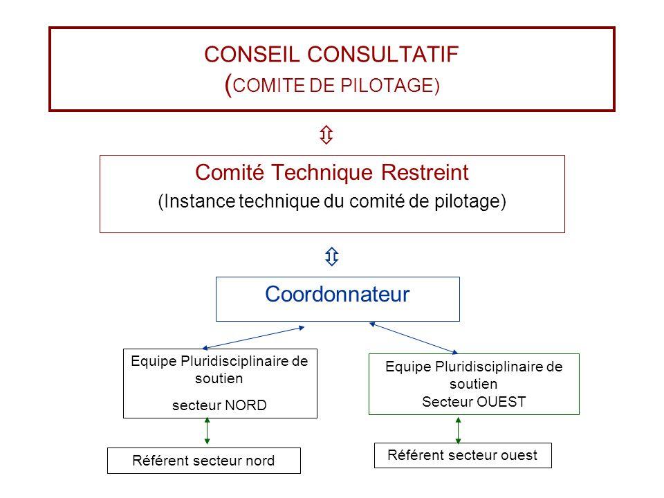 CONSEIL CONSULTATIF (COMITE DE PILOTAGE)