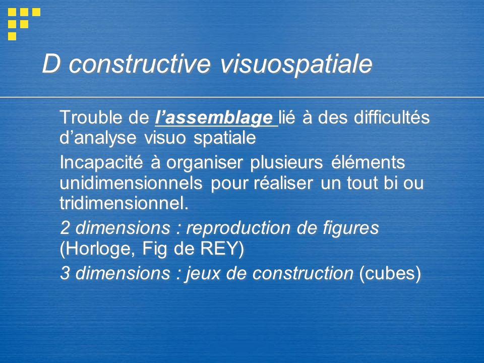 D constructive visuospatiale