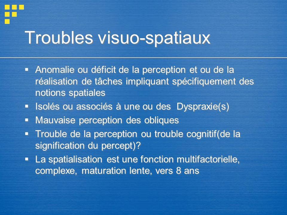 Troubles visuo-spatiaux