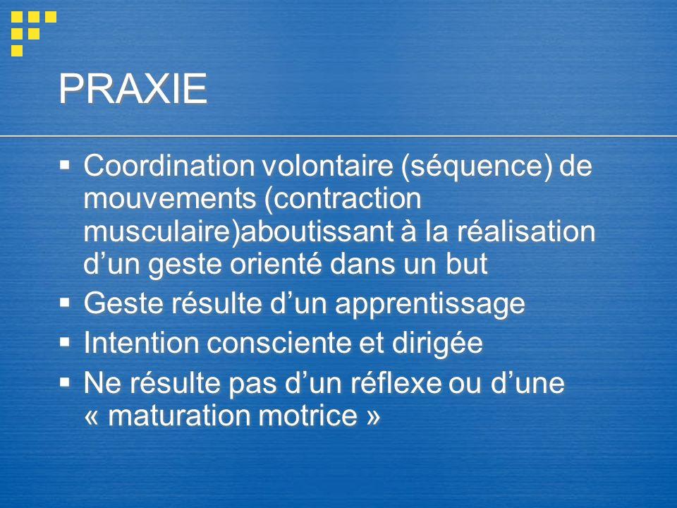 PRAXIE Coordination volontaire (séquence) de mouvements (contraction musculaire)aboutissant à la réalisation d'un geste orienté dans un but.