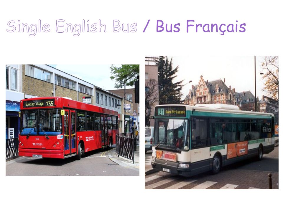 Single English Bus / Bus Français