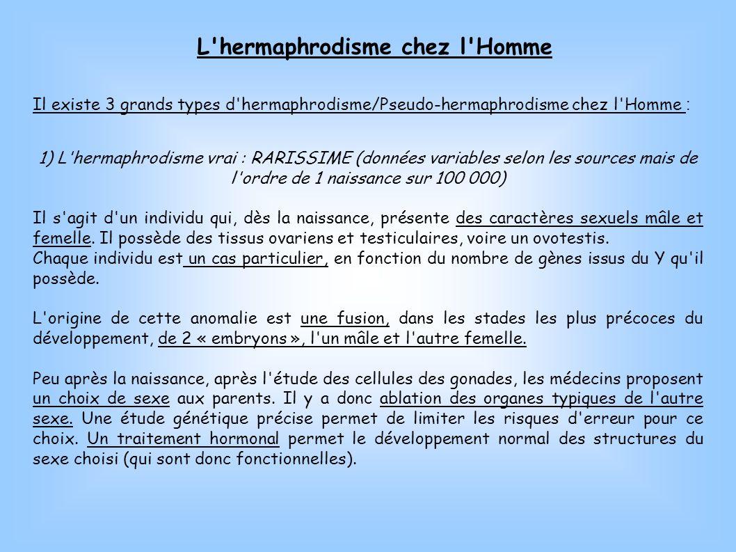 L hermaphrodisme chez l Homme