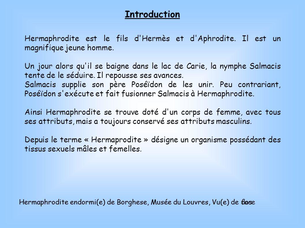 IntroductionHermaphrodite est le fils d Hermès et d Aphrodite. Il est un magnifique jeune homme.