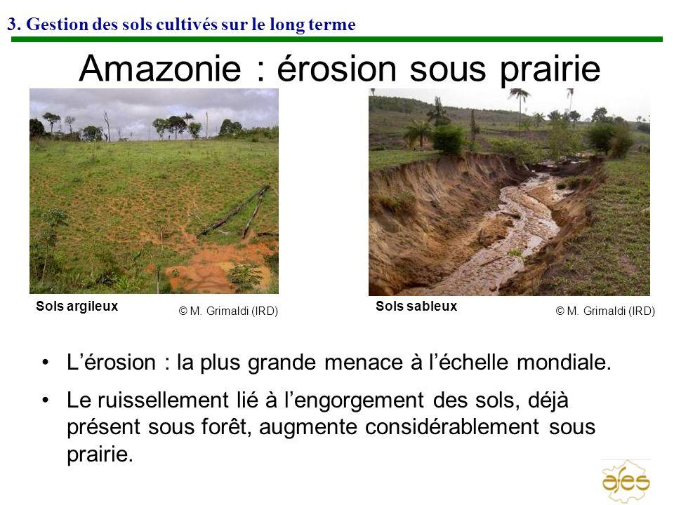 Amazonie : érosion sous prairie