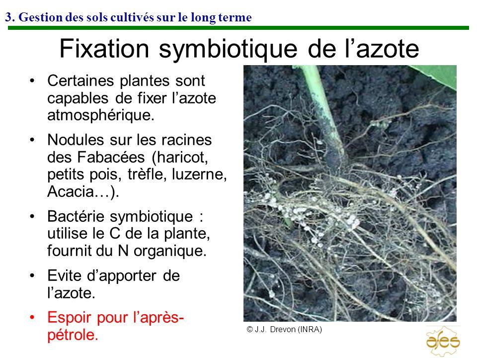 Fixation symbiotique de l'azote