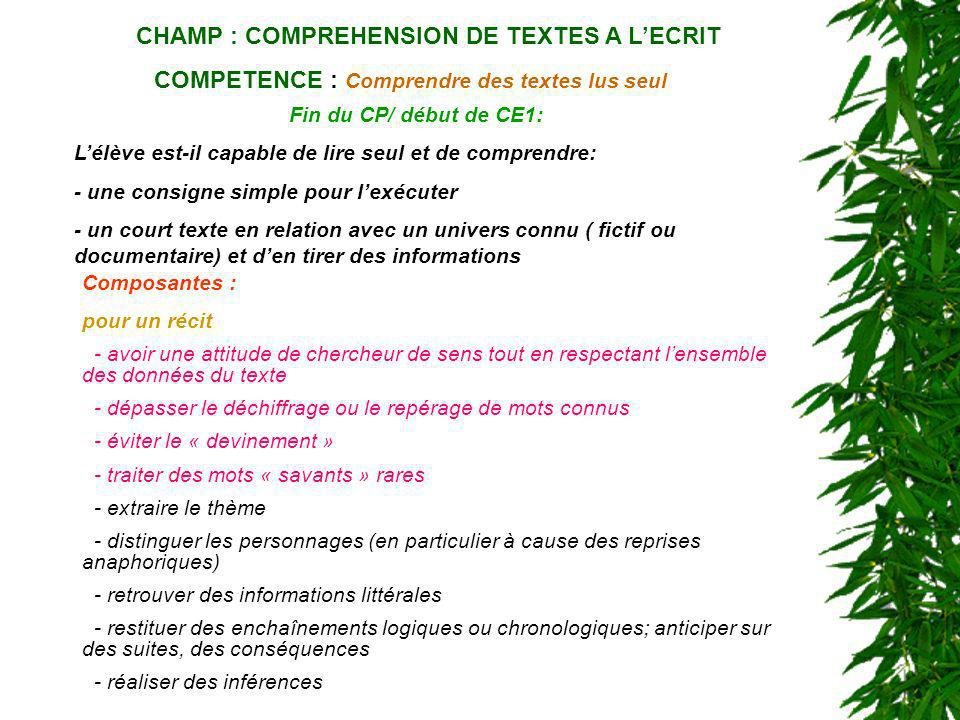 CHAMP : COMPREHENSION DE TEXTES A L'ECRIT