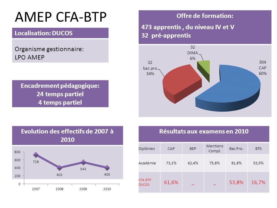 AMEP CFA-BTP Offre de formation: 473 apprentis , du niveau IV et V