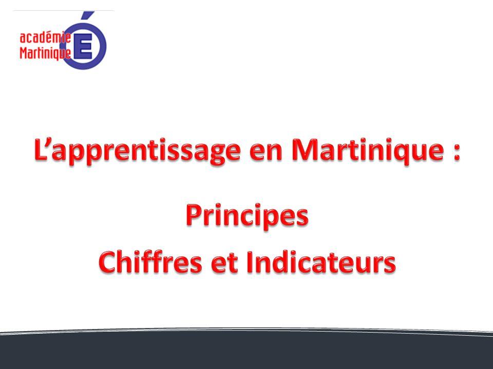 L'apprentissage en Martinique : Chiffres et Indicateurs