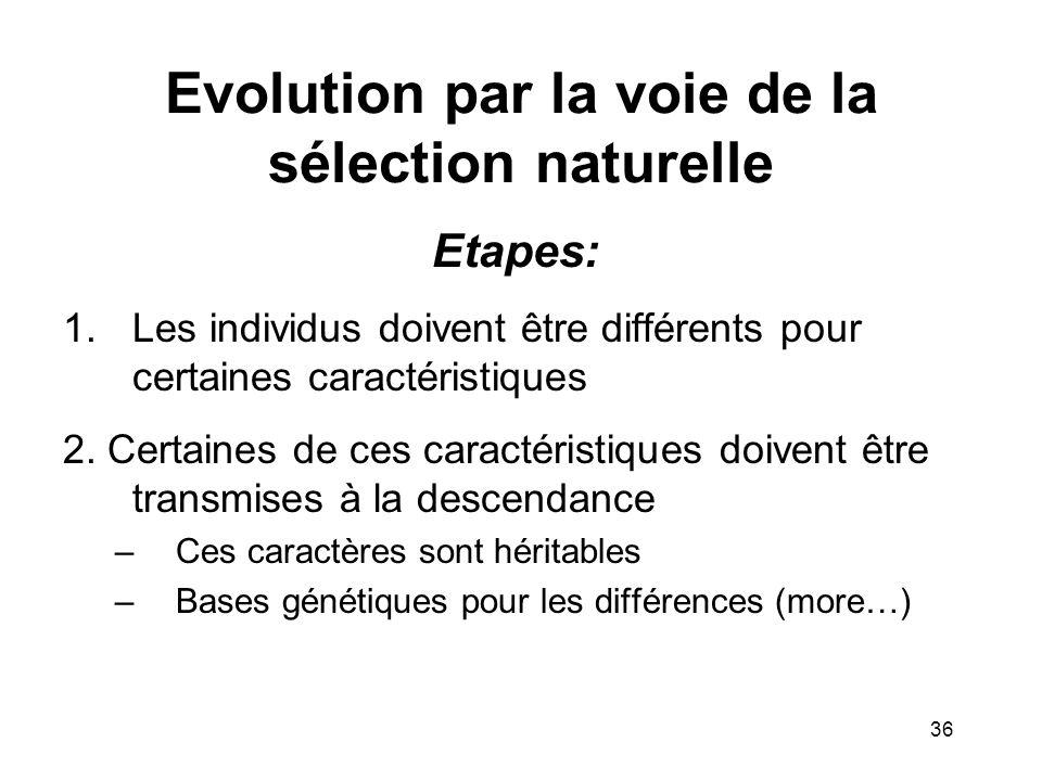 Evolution par la voie de la sélection naturelle