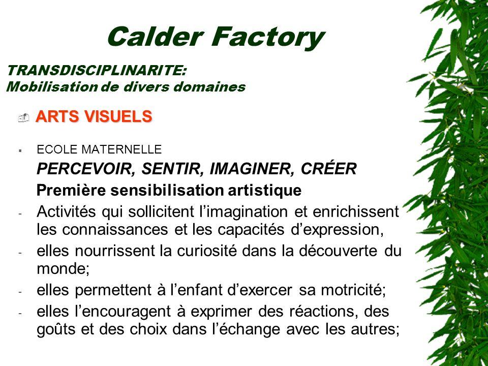 Calder Factory ARTS VISUELS PERCEVOIR, SENTIR, IMAGINER, CRÉER
