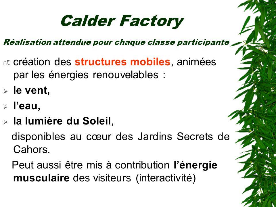 Calder Factory Réalisation attendue pour chaque classe participante. création des structures mobiles, animées par les énergies renouvelables :