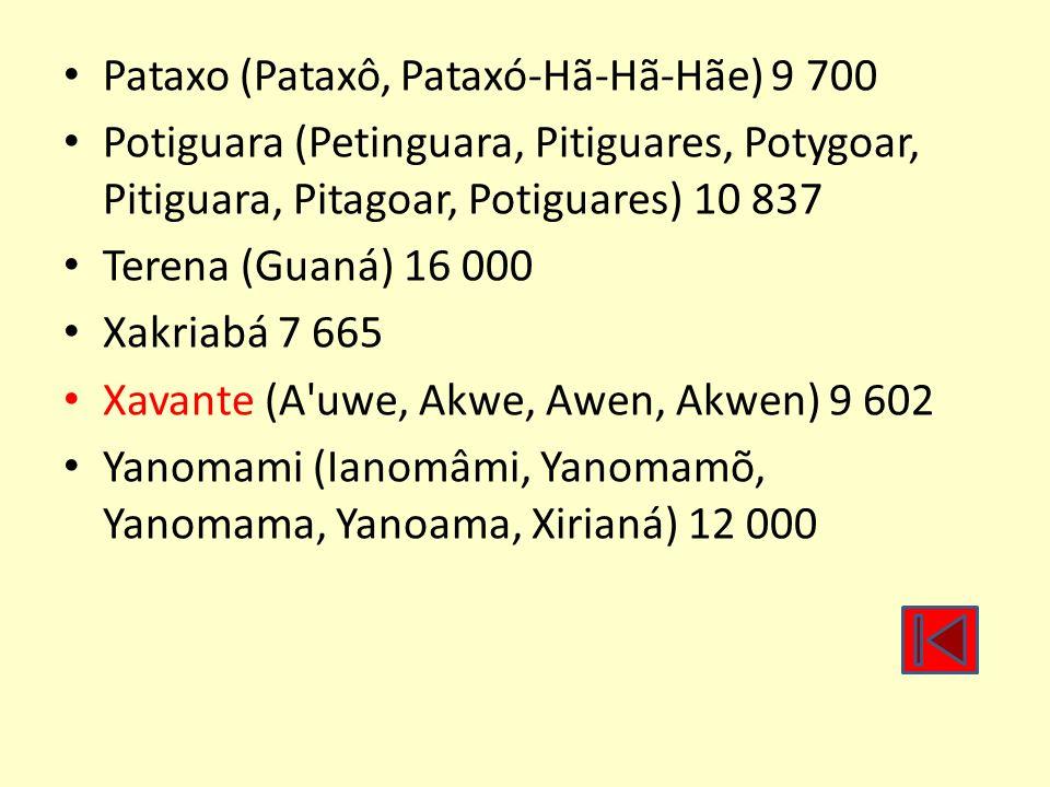 Pataxo (Pataxô, Pataxó-Hã-Hã-Hãe) 9 700