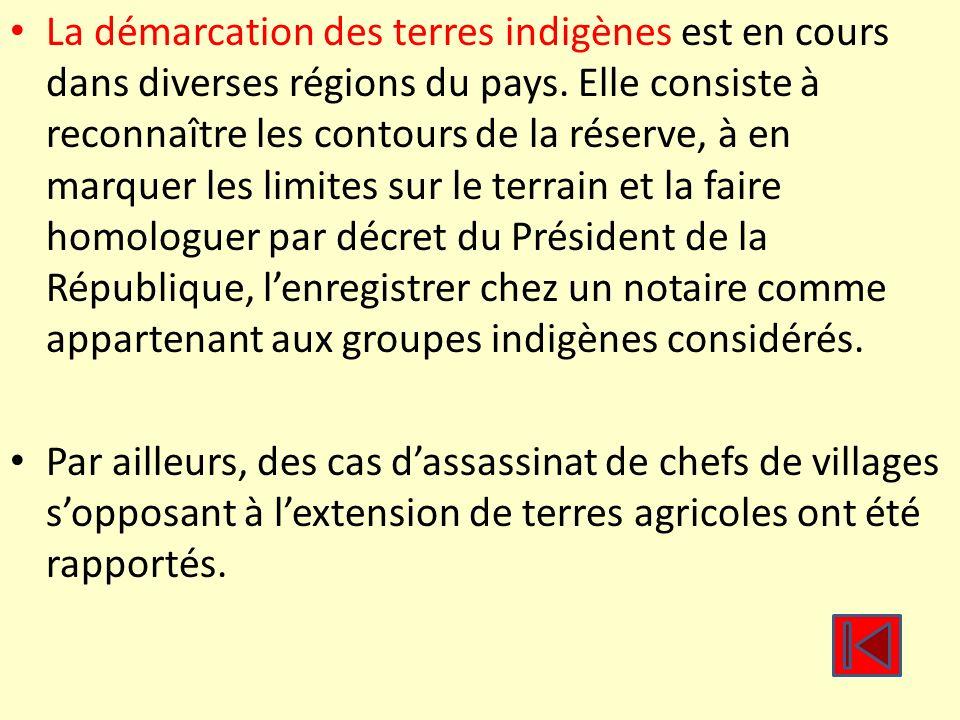 La démarcation des terres indigènes est en cours dans diverses régions du pays. Elle consiste à reconnaître les contours de la réserve, à en marquer les limites sur le terrain et la faire homologuer par décret du Président de la République, l'enregistrer chez un notaire comme appartenant aux groupes indigènes considérés.