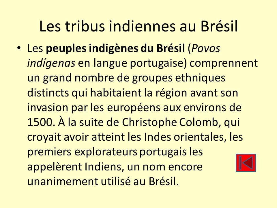 Les tribus indiennes au Brésil