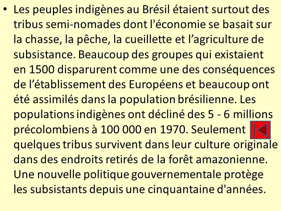 Les peuples indigènes au Brésil étaient surtout des tribus semi-nomades dont l économie se basait sur la chasse, la pêche, la cueillette et l'agriculture de subsistance.