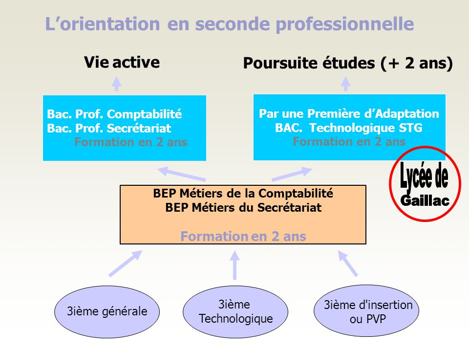 L'orientation en seconde professionnelle