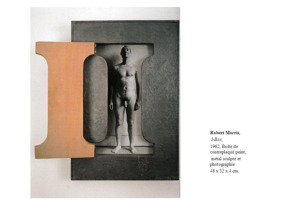 Robert Morris, I-Box, 1962, Boîte de contreplaqué peint, métal sculpté et photographie.
