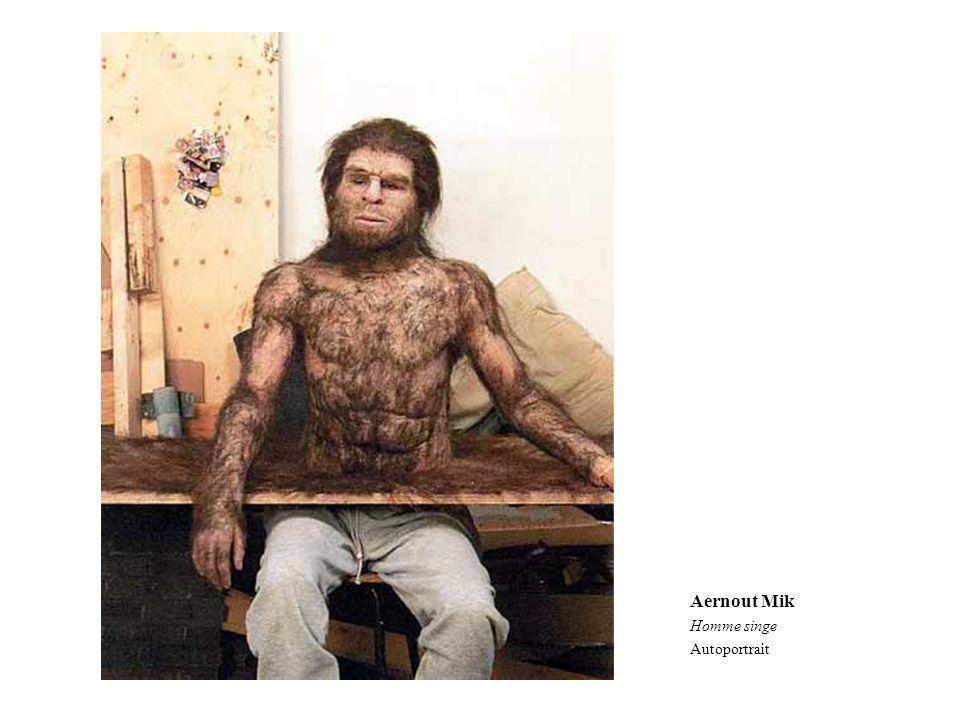 Aernout Mik Homme singe Autoportrait