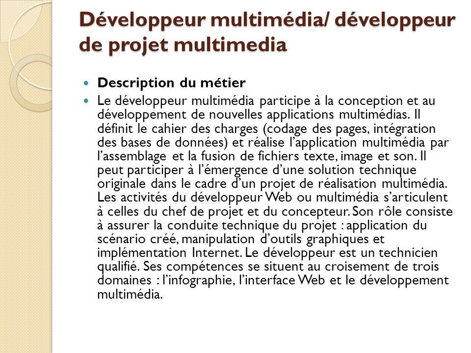 Développeur multimédia/ développeur de projet multimedia