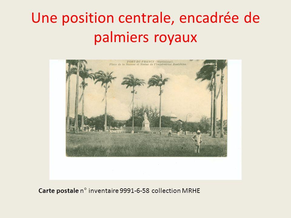 Une position centrale, encadrée de palmiers royaux