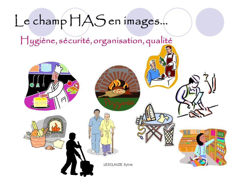 Le champ HAS en images... Hygiène, sécurité, organisation, qualité