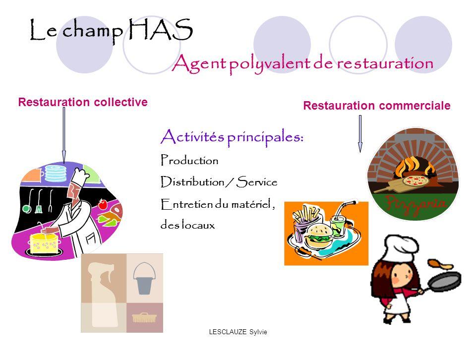 Le champ HAS Agent polyvalent de restauration Activités principales: