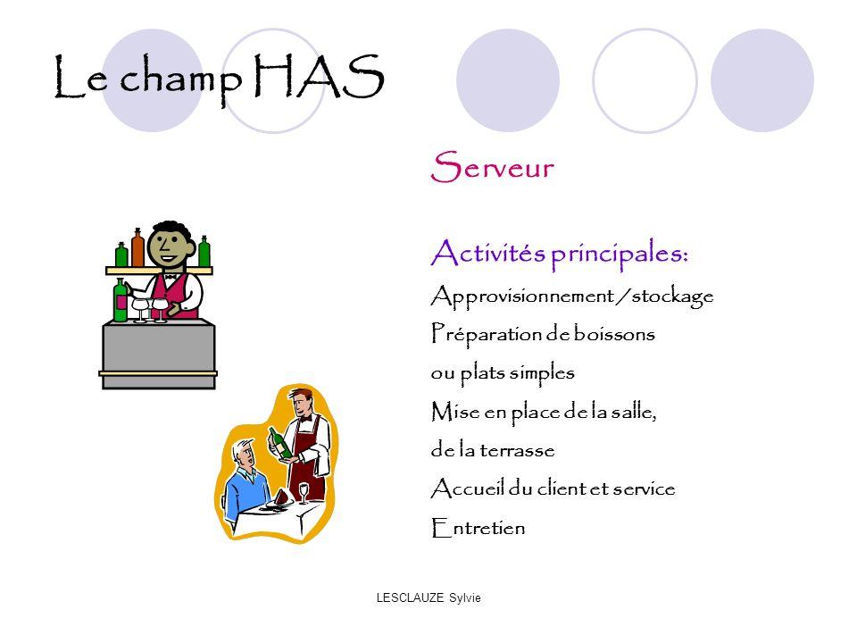 Le champ HAS Serveur Activités principales: