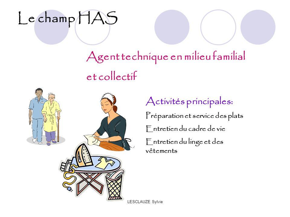 Le champ HAS Agent technique en milieu familial et collectif