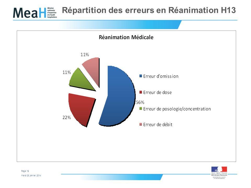 Répartition des erreurs en Réanimation H13